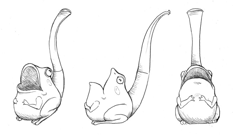 frog pipe drawings
